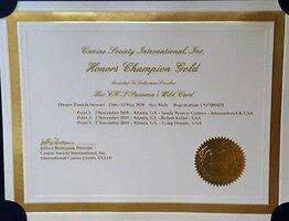 Honors CH Gold.jpg